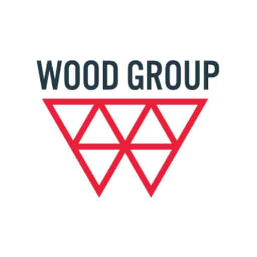 Borer Data Systems Clients Wood Group